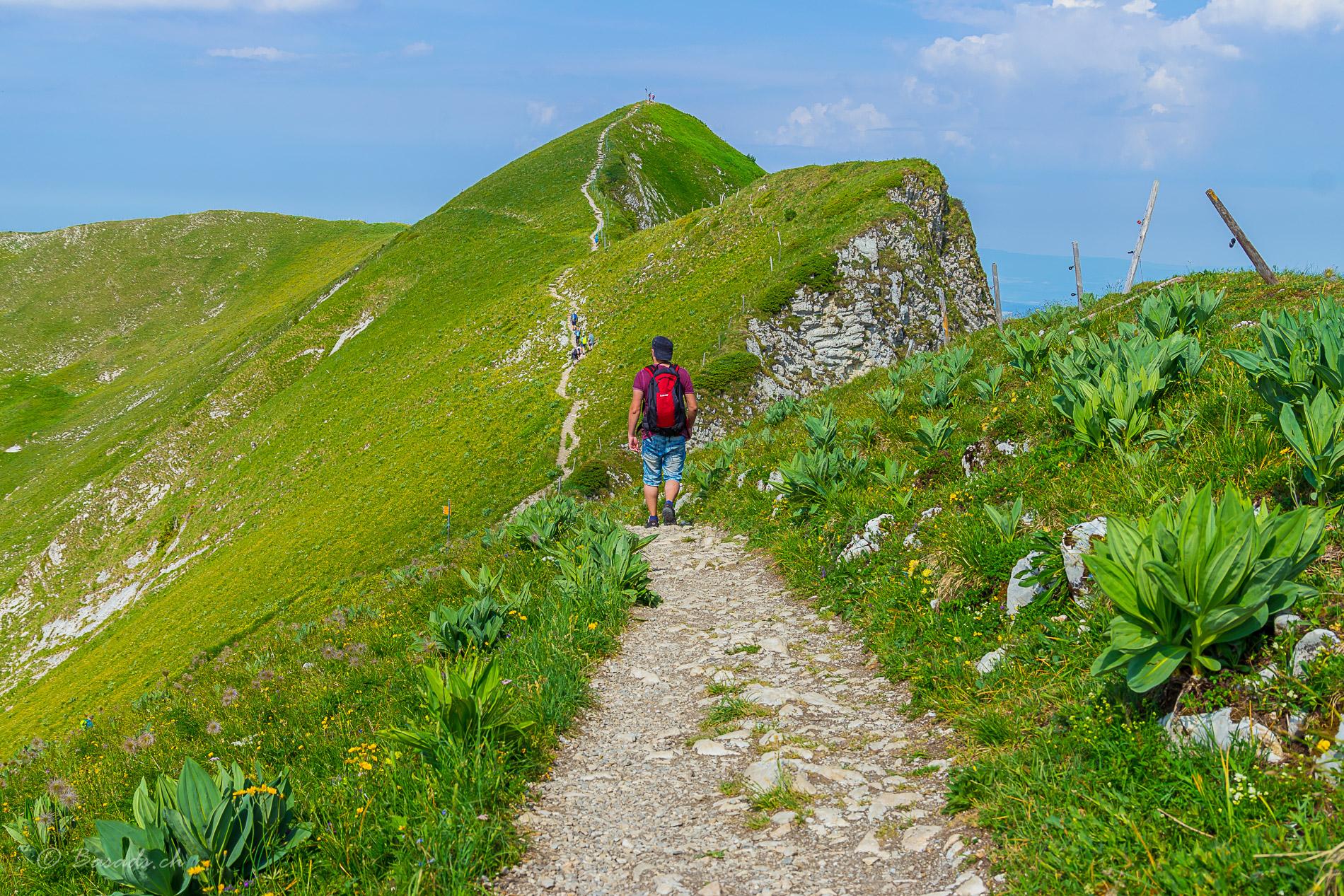 Moléson Gratwanderung auf dem Tremetta Grat in Fribourg