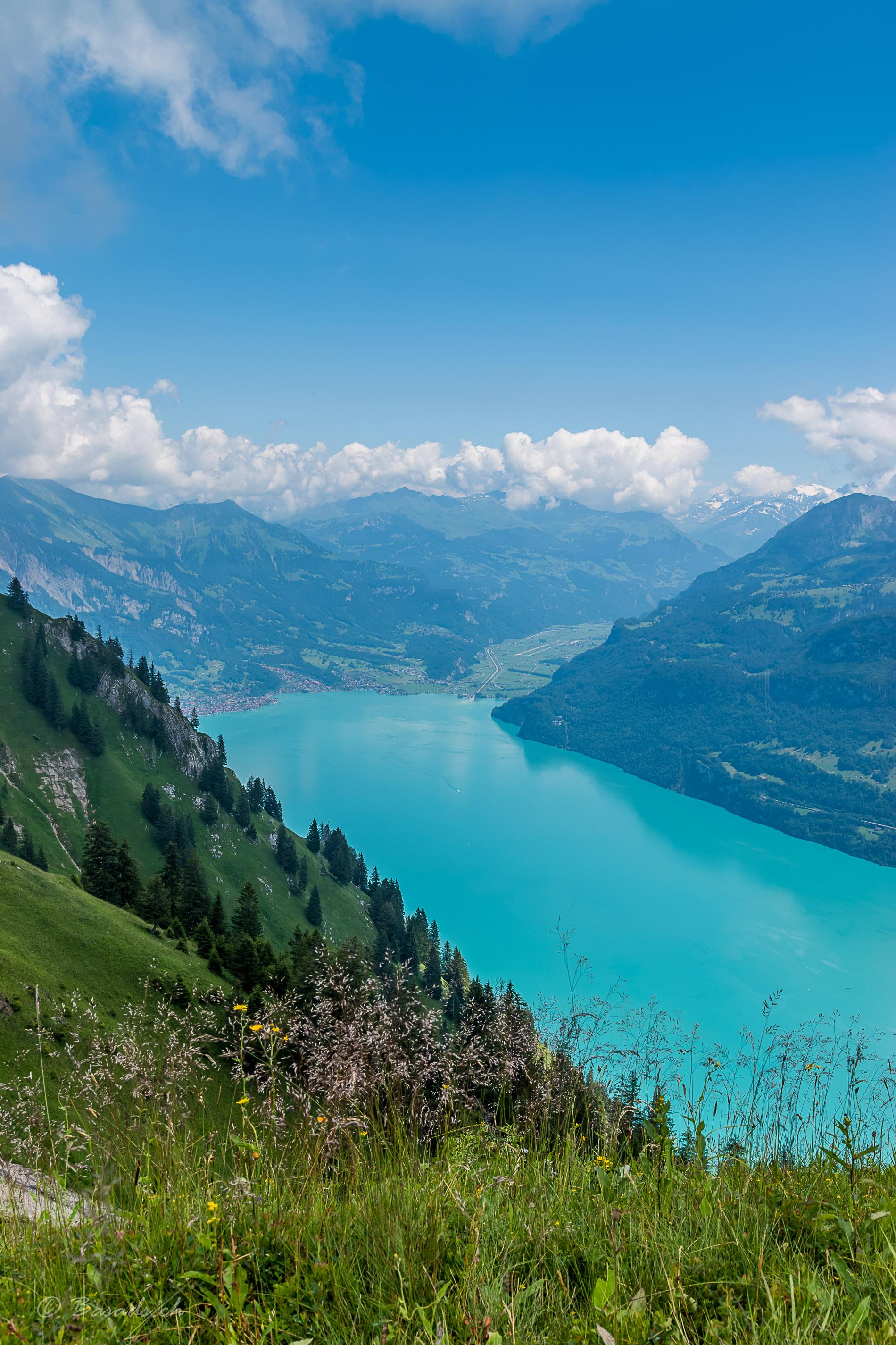 Türkishblauer See – der Brienzersee Blick von den Berner Alpen auf den wunderschönen See