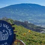 Walliser Weinweg Wanderung – von Sion nach Venthône