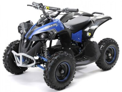 Kinder Elektro Quad Renegade 1000 Watt