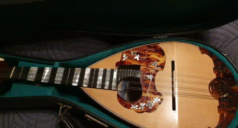 Schöne Konzert Mandoline