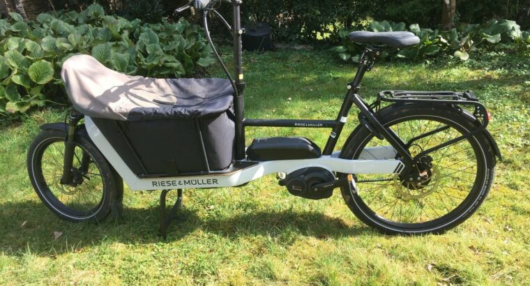 Riese + Müller Packster 40