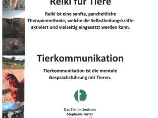 Reiki und Tierkommunikation